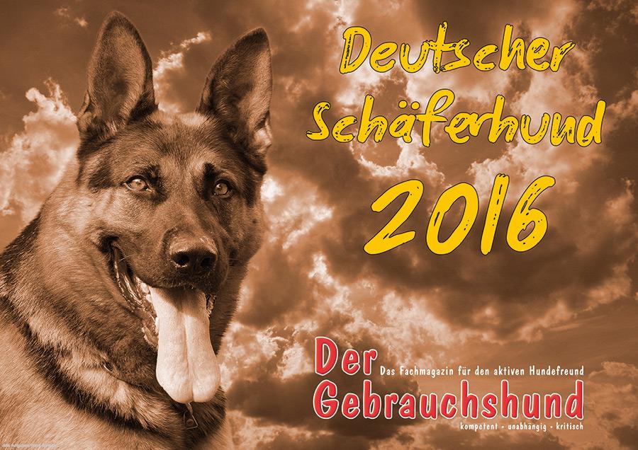 dsh-kal-2016.jpg